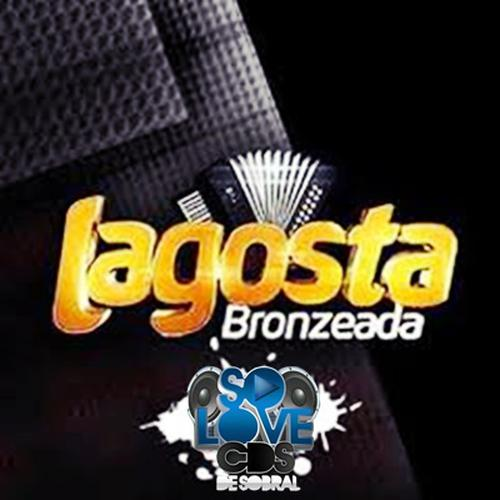 Lagosta Bronzeada - Crateús - CE - 2020