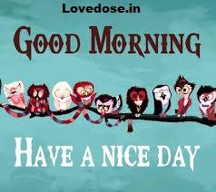Funny Morning