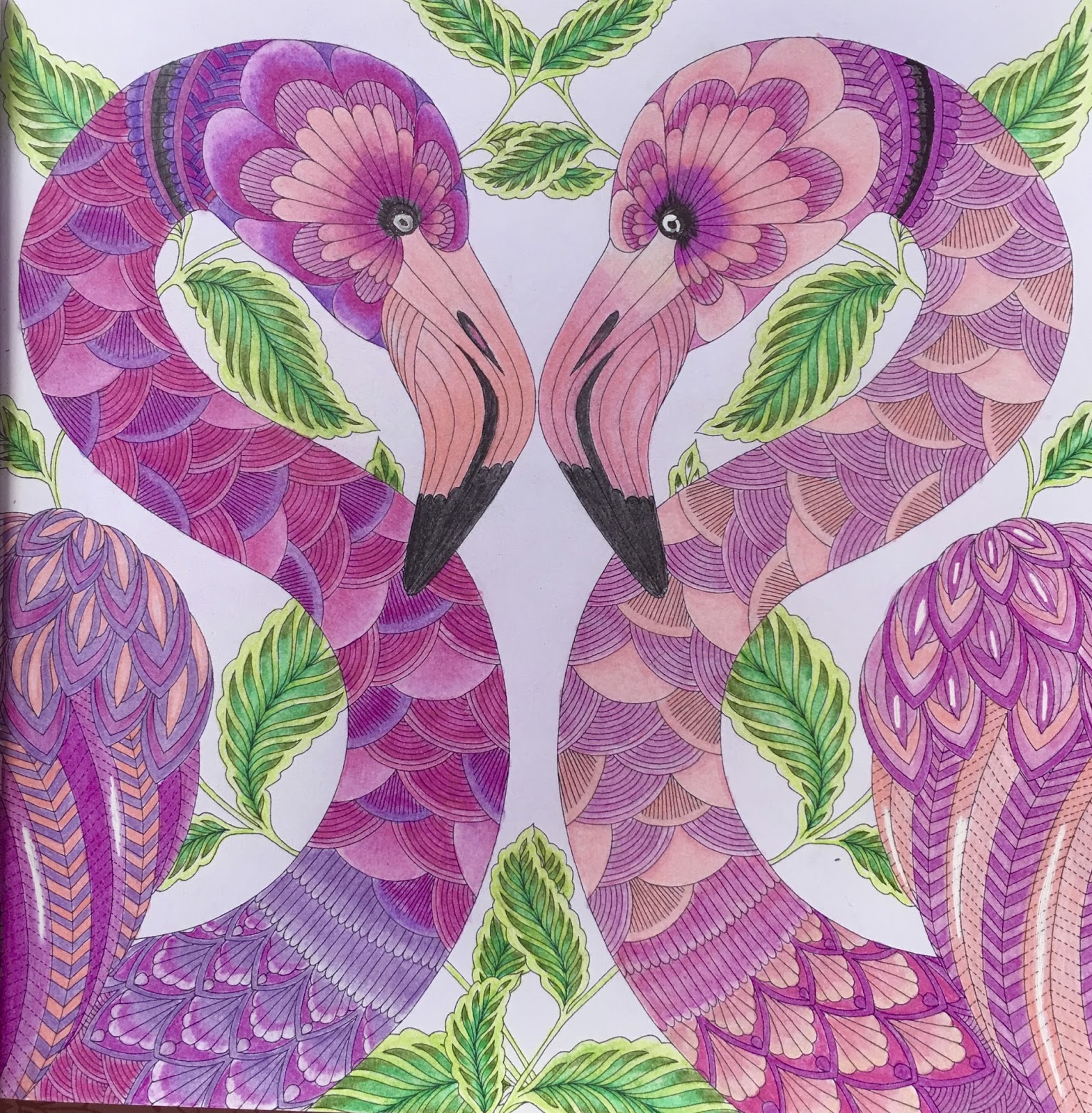 Here Are A Few Pages I Colored From The Tropical World Coloring Book Beautiful Great Quality