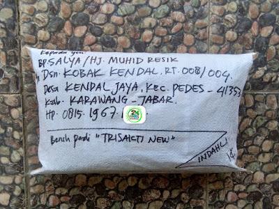 Benih pesanan SALYA Karawang, Jabar.    (Setelah Packing)