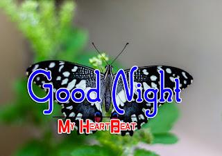 Latest Beautiful Good Night Wallpaper Free Download %2B66