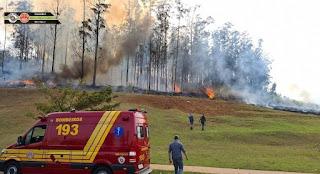 Avião cai no interior de São Paulo e Bombeiros confirmam sete mortes