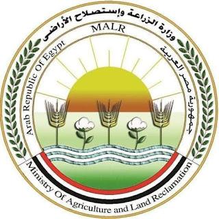 """غدا.. """"الزراعة"""" تطلق فعاليات مهرجان العسل المصري بحديقة الاورمان بالجيزة"""