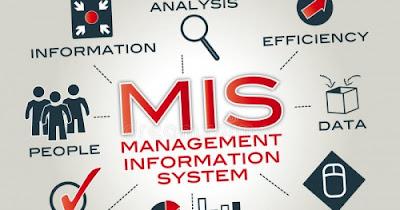 نشامى ويب - تخصص نظم المعلومات الادارية ( MIS )
