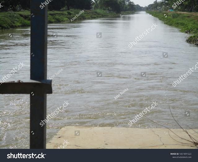 https://www.shutterstock.com/image-photo/irrigation-dam-paddy-field-waters-indramayu-1851891523