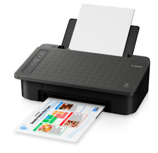 is an a la vogue together with minimized printer amongst Low Canon PIXMA TS307 Drivers Download