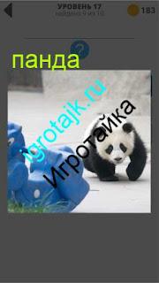 панда двигается в вольере 17 уровень 400 плюс слов 2