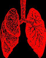 bronchite asthmatiforme traitement