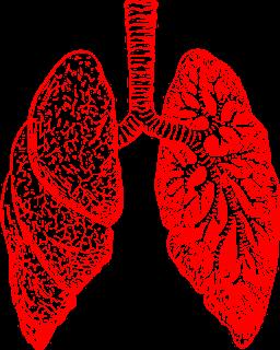 causes bronchite asthmatiforme