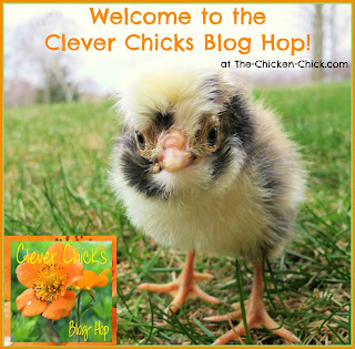 Welcome to The Chicken Chick's Clever Chicks Blog Hop!