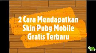Skin Pubg Mobile Gratis
