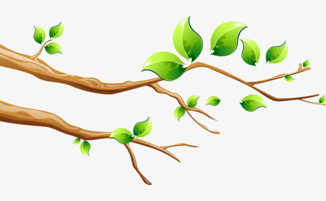 Картинка ветки дерева для детей на прозрачном фоне