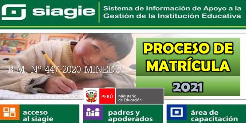 Proceso de Matrícula 2021 - Modalidades de matrícula