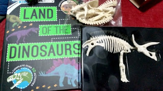 dinosaur factivity contents