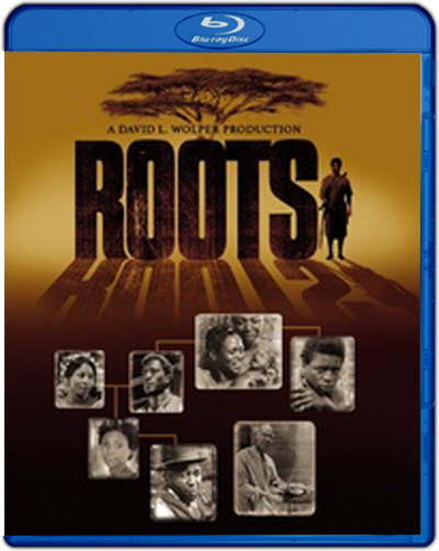 Roots: First Season (1977) 1080p BDREMUX Dual Latino-Inglés