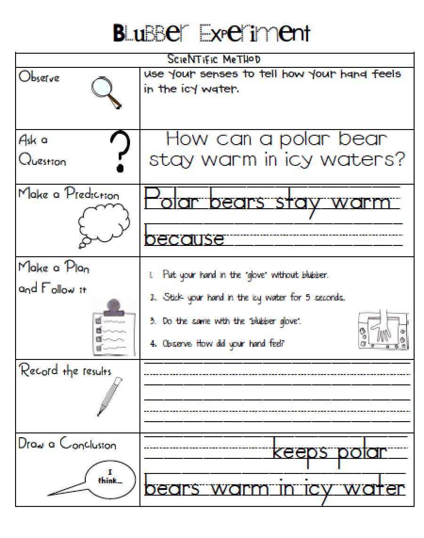 Printables Scientific Method Worksheet Kids method worksheet kids davezan scientific davezan