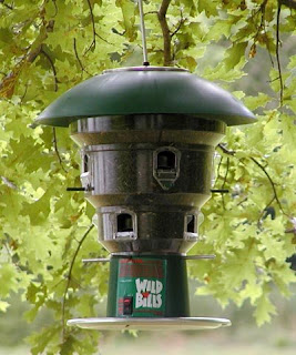 Battery operated anti-squirrel feeder