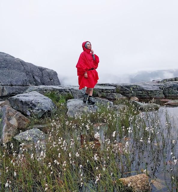 скандинавия, норвегия, поход, дождевик, красный дождевик, величественная норвегия, норвегия фото