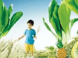 Dinh dưỡng ngày Tết cho trẻ