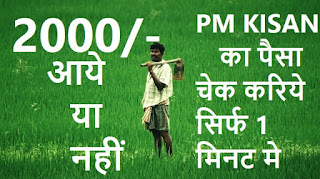 Check PM Kisan Status perfect method