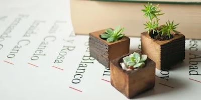Pot Bunga Unik dan Cantik Untuk Interior Rumah Anda