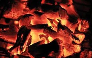 Contoh reaksi pembakaran