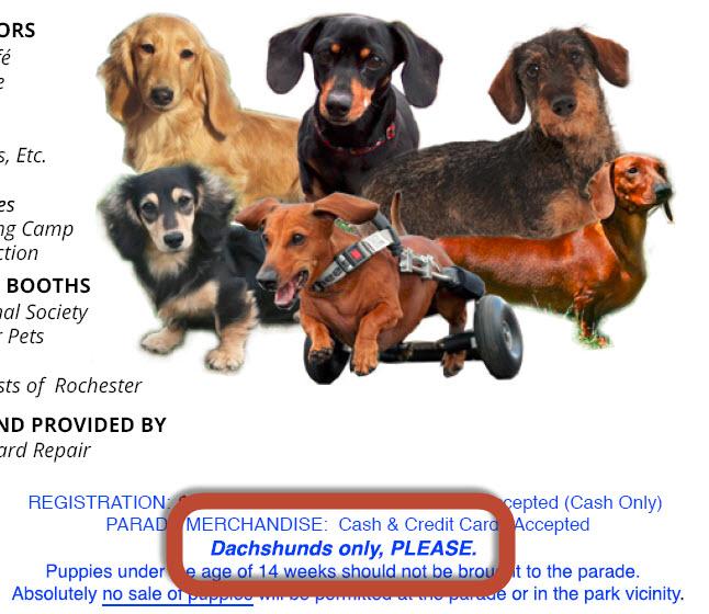 rochester dachshund parade