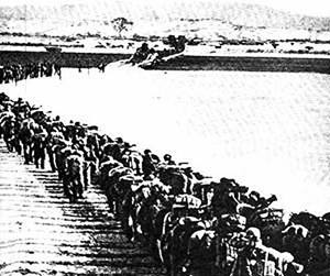 mochi thinking: Eyewitness: A North Korean Remembers by