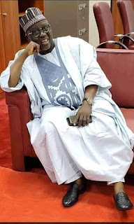 OPINION: Nasarawa Now Have A Sense Of Belonging At The Senate By Bilyaminu Yusuf Bilyaminu