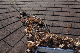 Time For Roof Cleaning