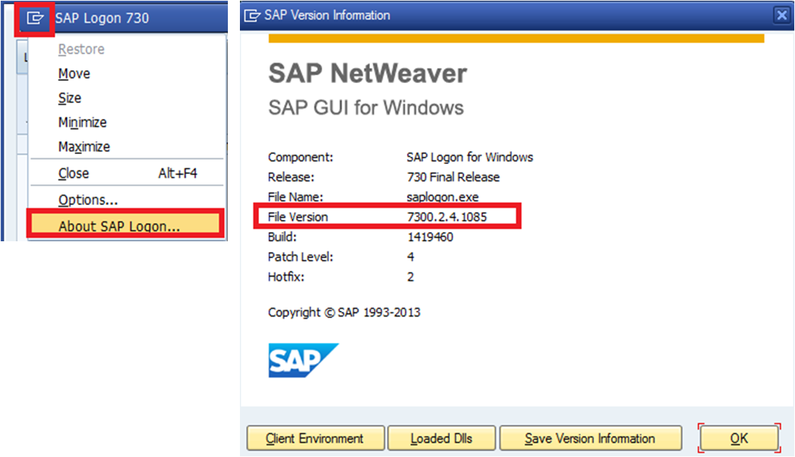 SAP GUI VERSION CHECK - HOW TO FIND THE VERSION OF SAP GUI
