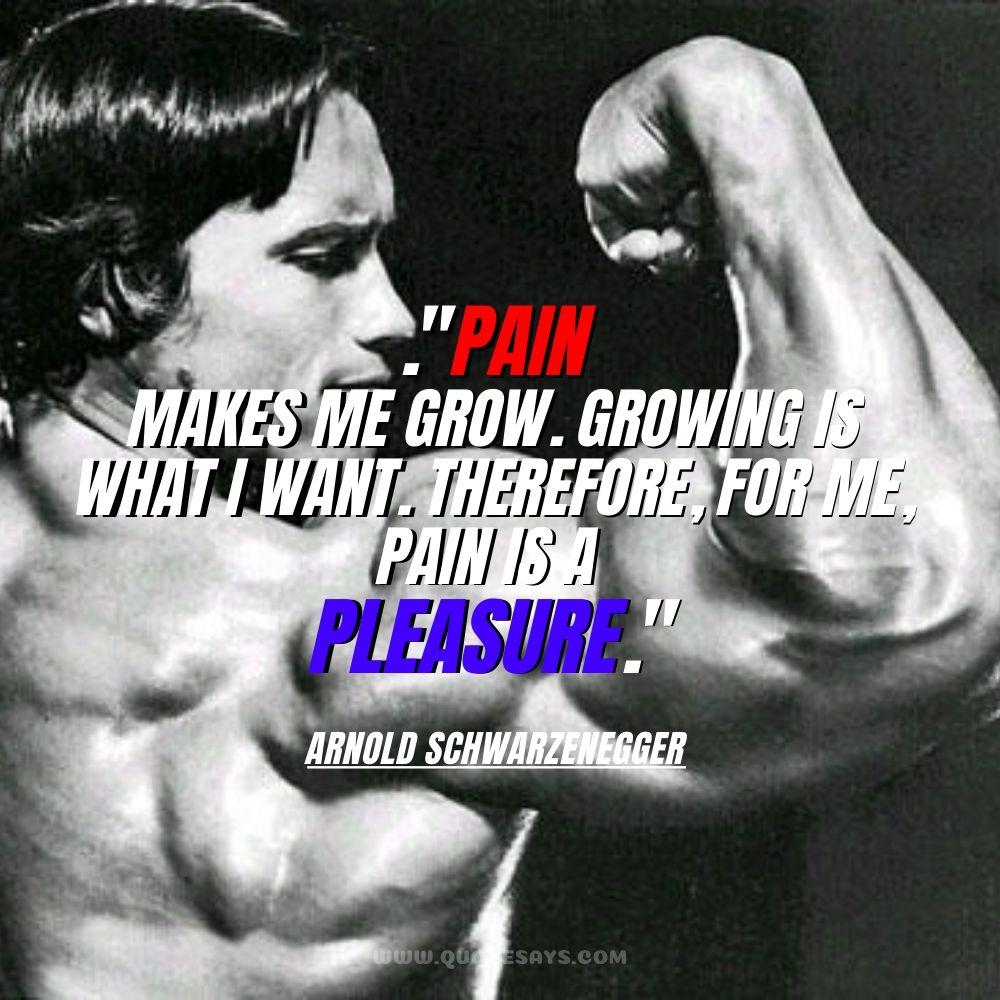 Arnold Schwarzenegger quotes, Arnold Schwarzenegger quotes movies