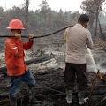 Kompak, RPK PT.MSK Bersama TNI/Polri,Apdes,MPA dan Masyarakat Bersama Padamkan Titik Api