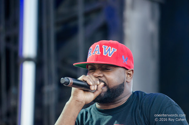 Ghostface Killah at NXNE 2016 at The Portlands in Toronto June 17, 2016 Photo by Roy Cohen for One In Ten Words oneintenwords.com toronto indie alternative live music blog concert photography pictures