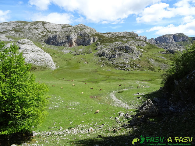 Ruta al Cantu Ceñal: Subiendo por la canal de la Vega del Bricial