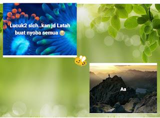 cara membuat background gambar pada status facebook