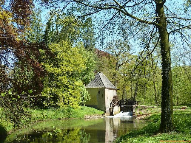 Vízimalom Hollandia