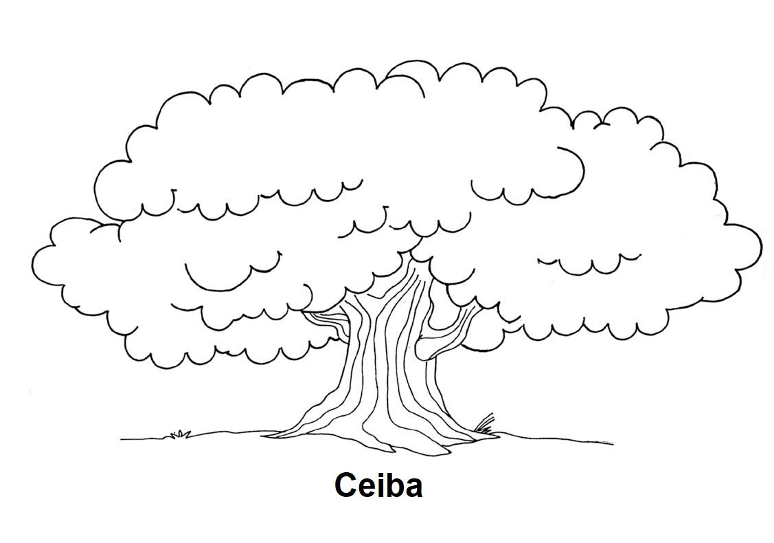 Imagens De Arvore Para Imprimir: Geography Blog: Dibujo Para Colorear De Ceiba