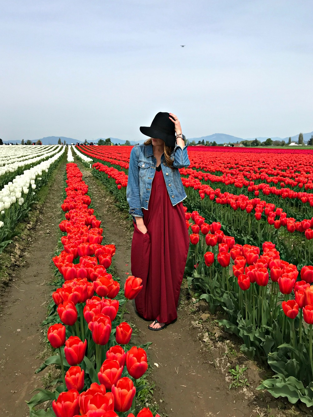 tulip festival in washington state