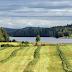 Peltojen vesistövaikutuksien vähentämiseen tarvitaan useita menetelmiä