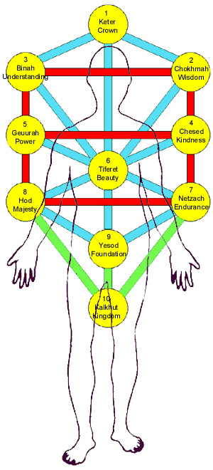 Sefirot and the human body