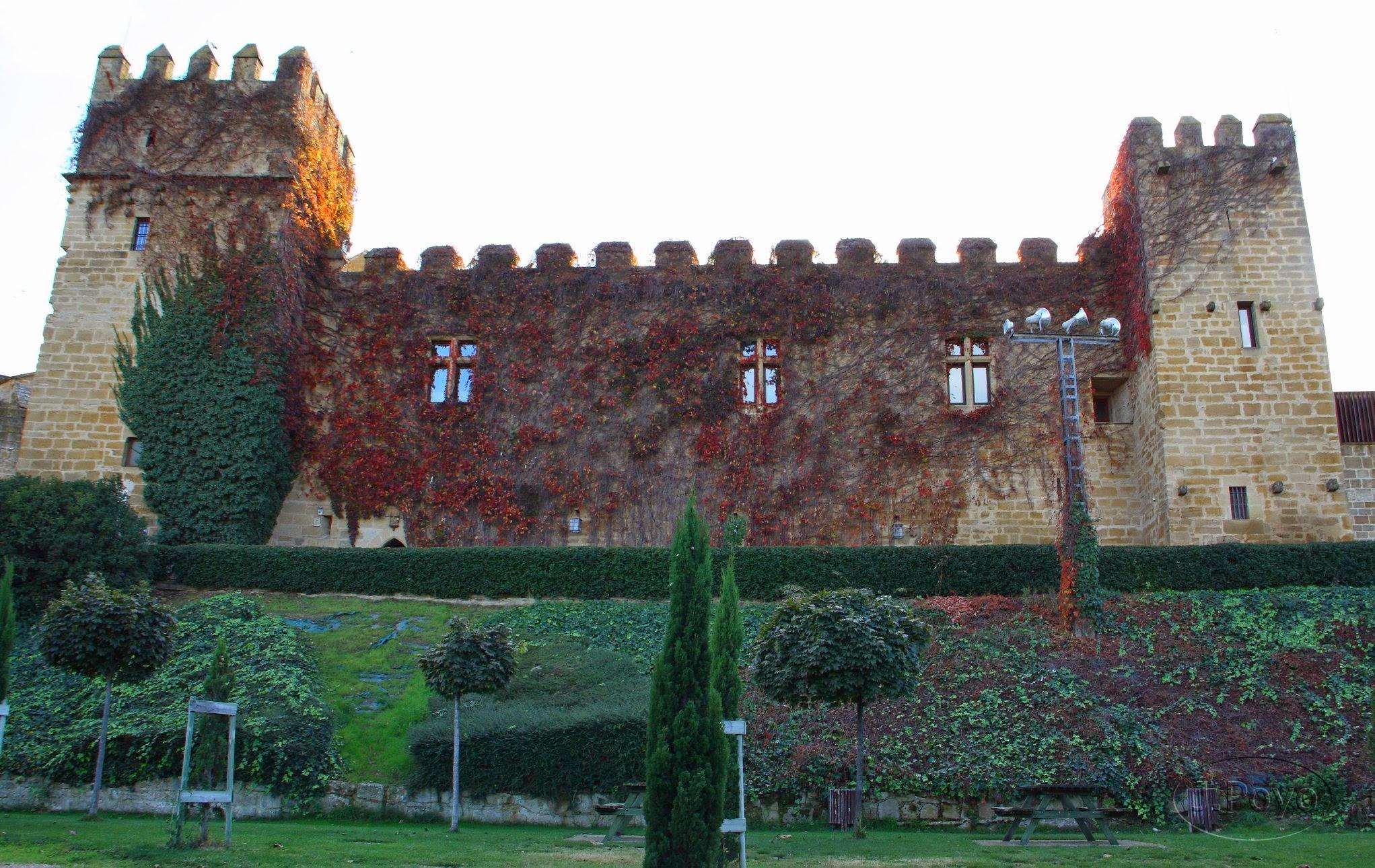 Palacio Viejo o de los Teobaldos de Olite
