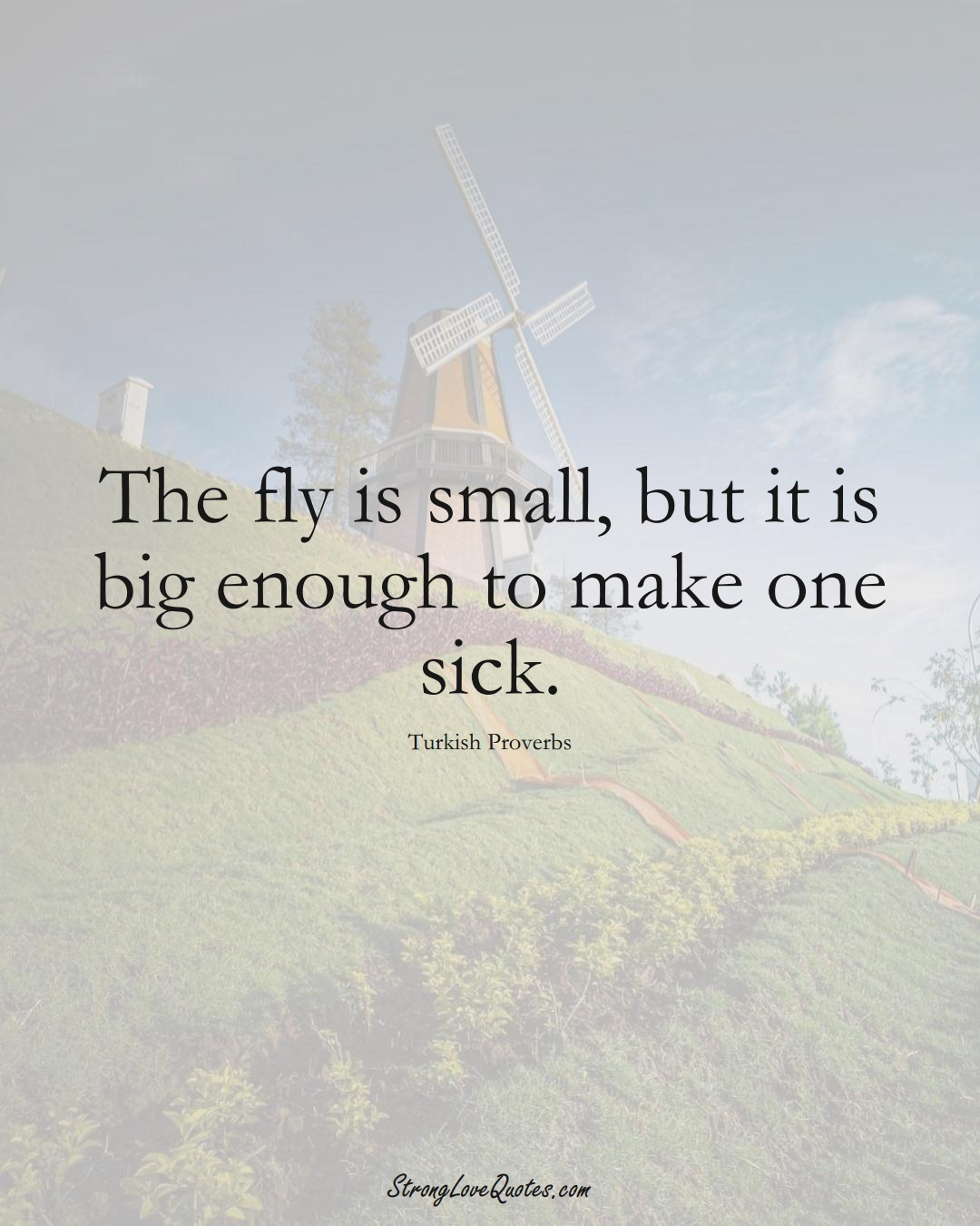 The fly is small, but it is big enough to make one sick. (Turkish Sayings);  #MiddleEasternSayings