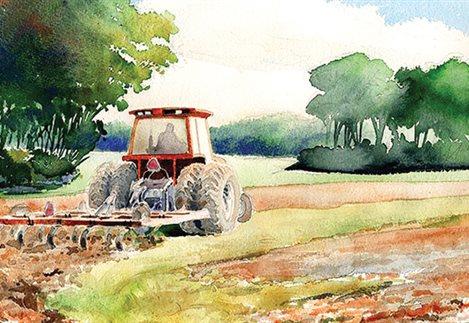 1ce3af91688 Βγάζει νικητές τους νέους αγρότες η ισοβαθμία στα Σχέδια Βελτίωσης ...