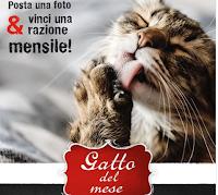 Logo Leonardo Italia : vinci gratis una razione mensile di cibo umido o secco