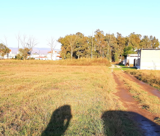 Αργολίδα: Πωλείται αγροτεμάχιο 2.200 στρέμματα στο Τημένιο Άργους