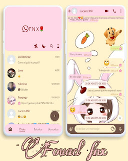 Anime Girl Rabbit Theme For YOWhatsApp & Fouad WhatsApp By Ave fénix