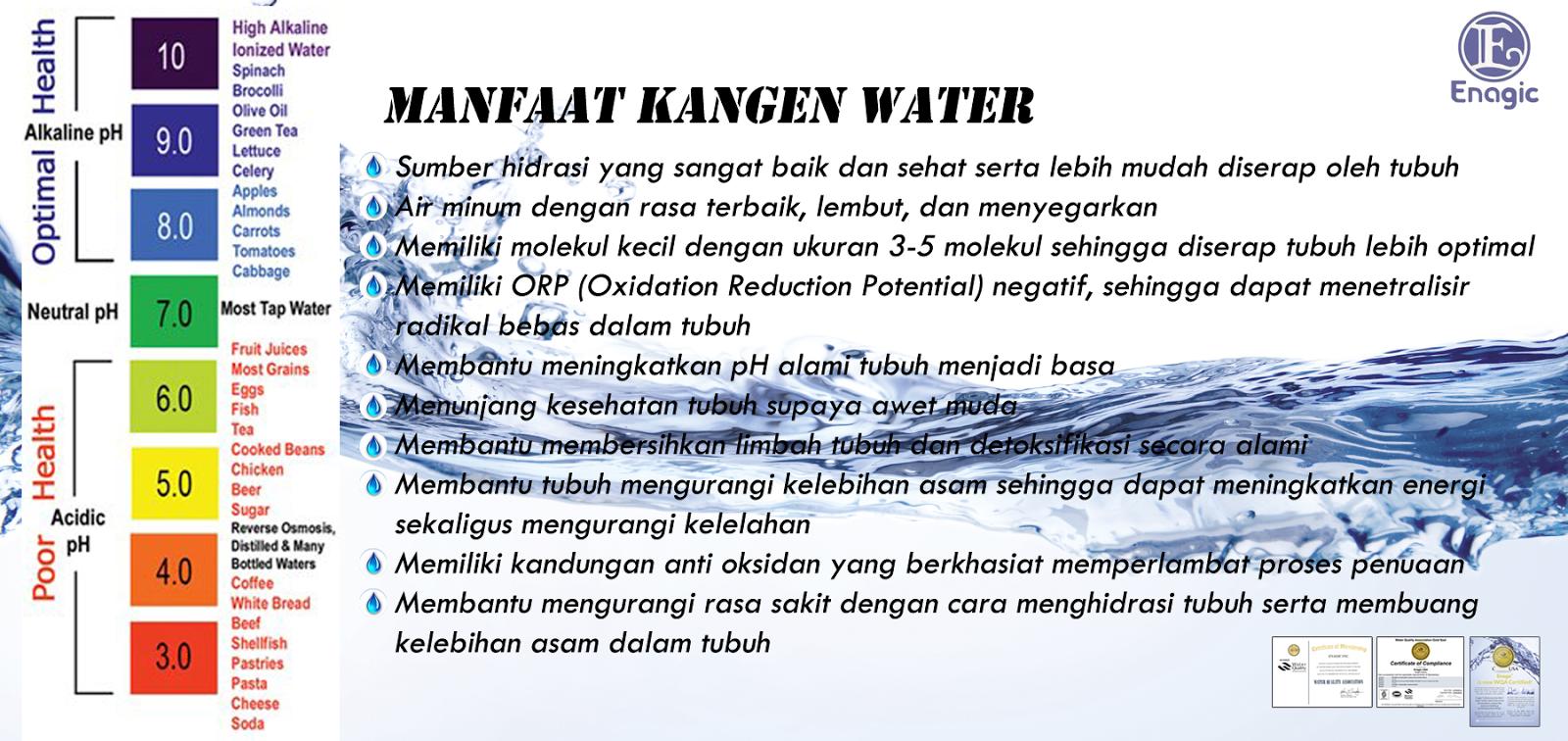 Jual Kangen Water Original 1