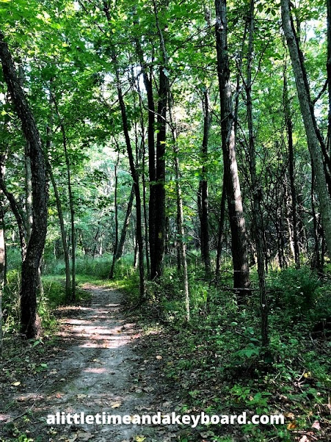 The forest enveloped us as we hiked along the Ice Age Trail in Janesville.