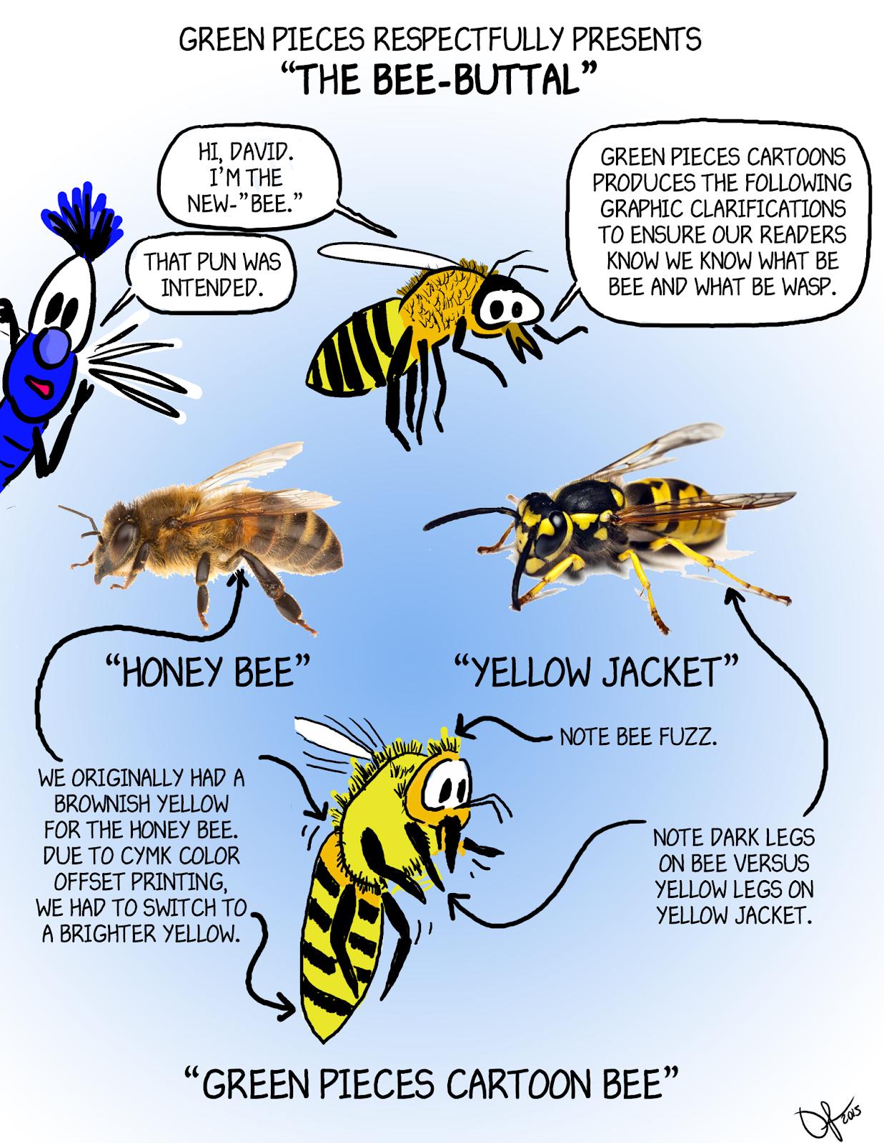 honey bees vs yellow jackets - HD1237×1600